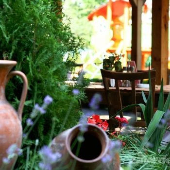 Зеленина в ресторант Фантазия